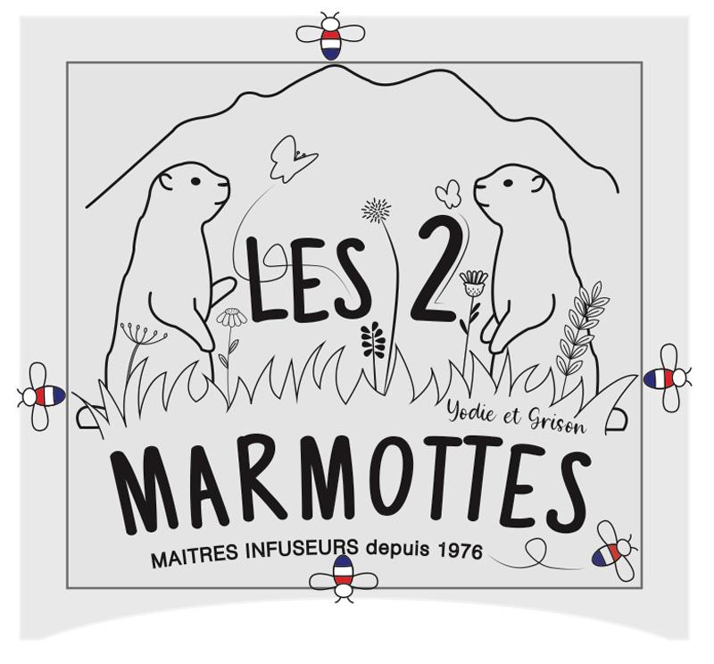 Refonte du logo les 2 marmottes, mise en évidence de la zone d'exclusion. Extrait de la charte graphique.