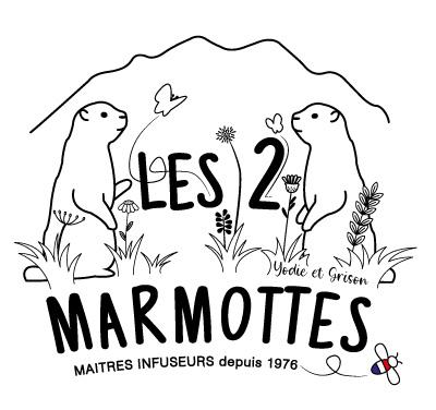Refonte du logo Les 2 marmottes réalisé par PEGGY Verdillon graphiste multimédia.