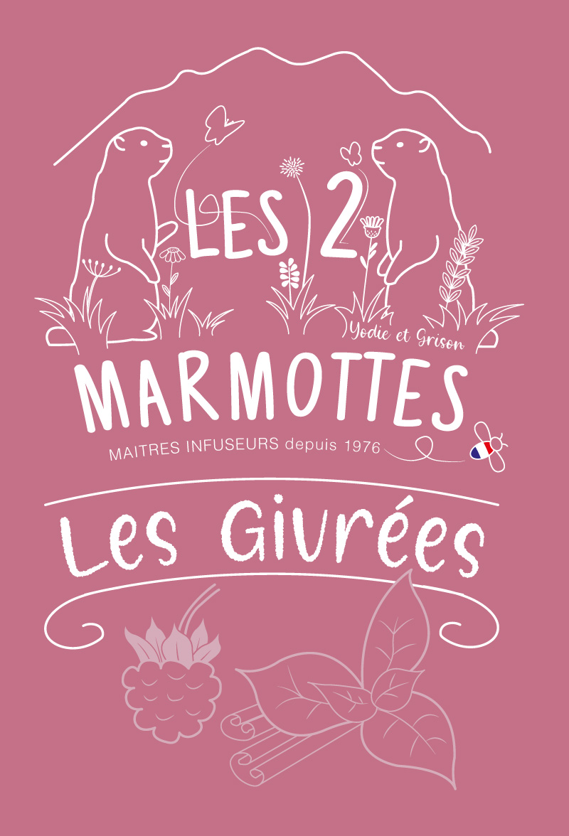 Illustration du packaging pour une boisson dérivée des infusions Les 2 marmottes, framboise.